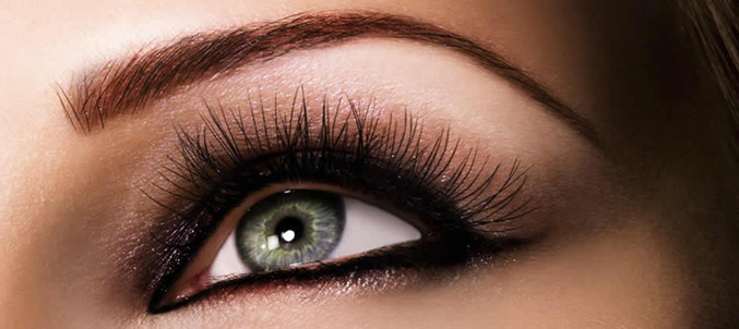 Eyebrow Shaping & Eyebrow Tinting